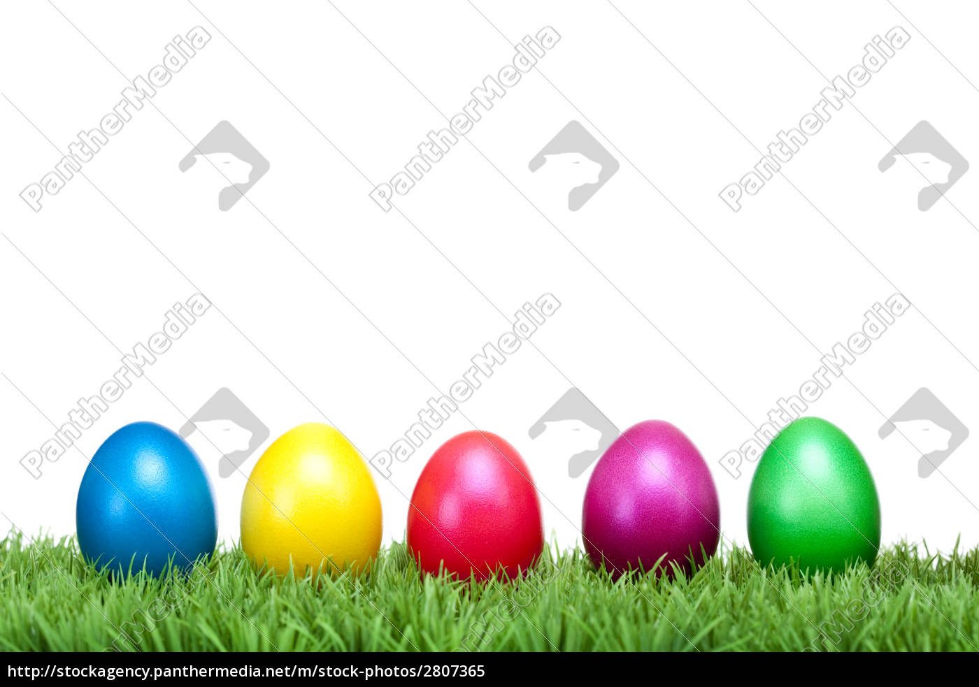colorful, easter, eggs, in, green, meadow - 2807365
