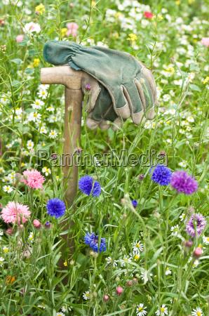 work, gloves, in, garden, meadow - 2807583