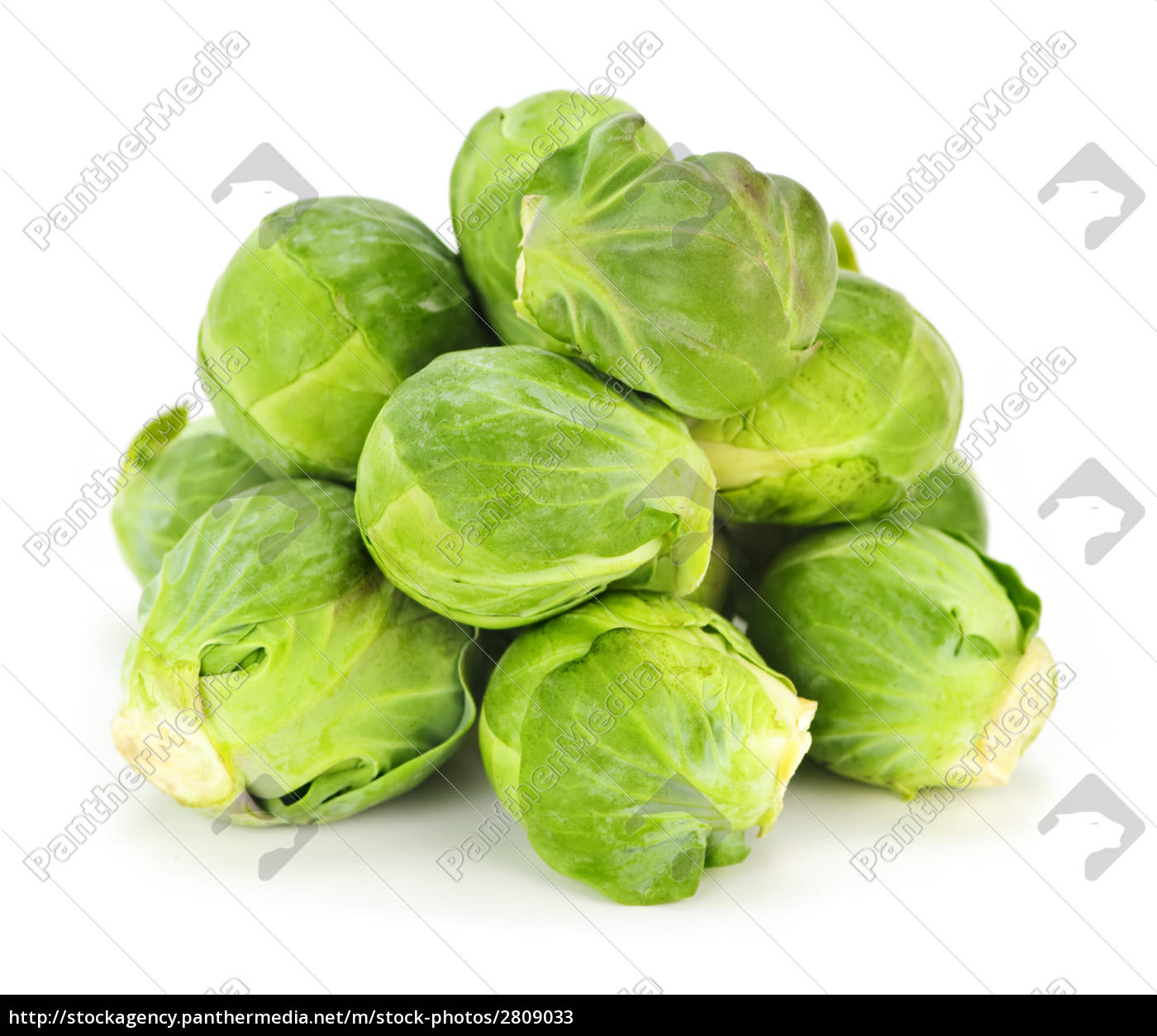isolated, brussels, sprouts - 2809033