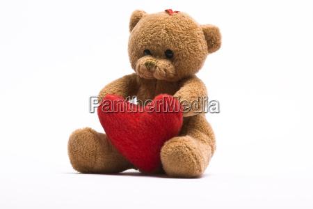 teddy - 2810469