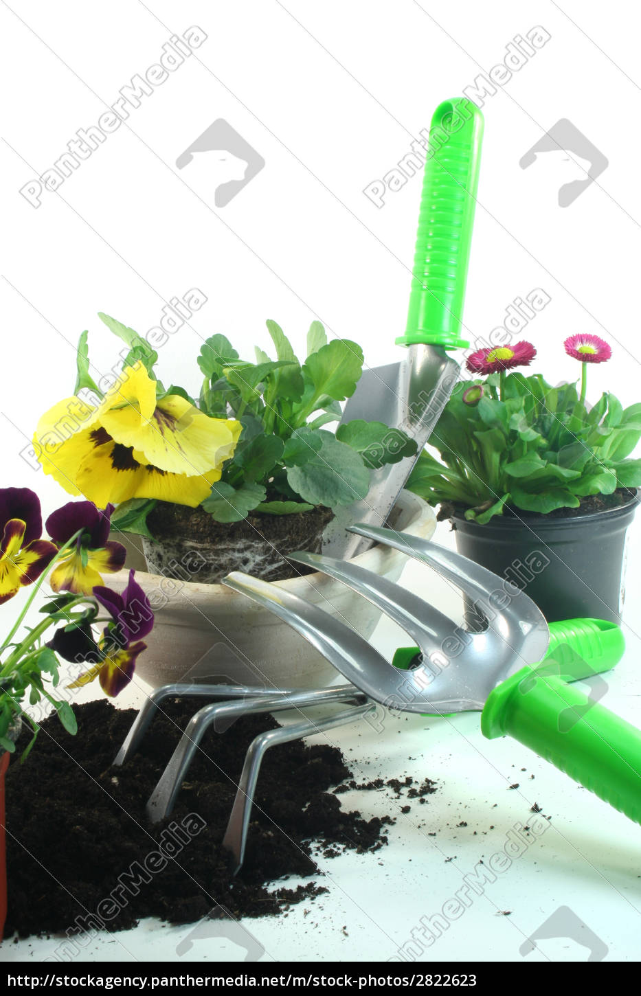 gardening, with, spring, flowers - 2822623