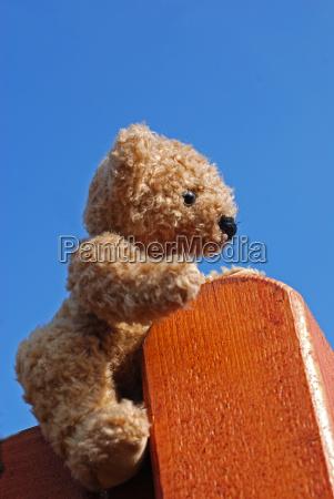 teddy, bear - 2824103