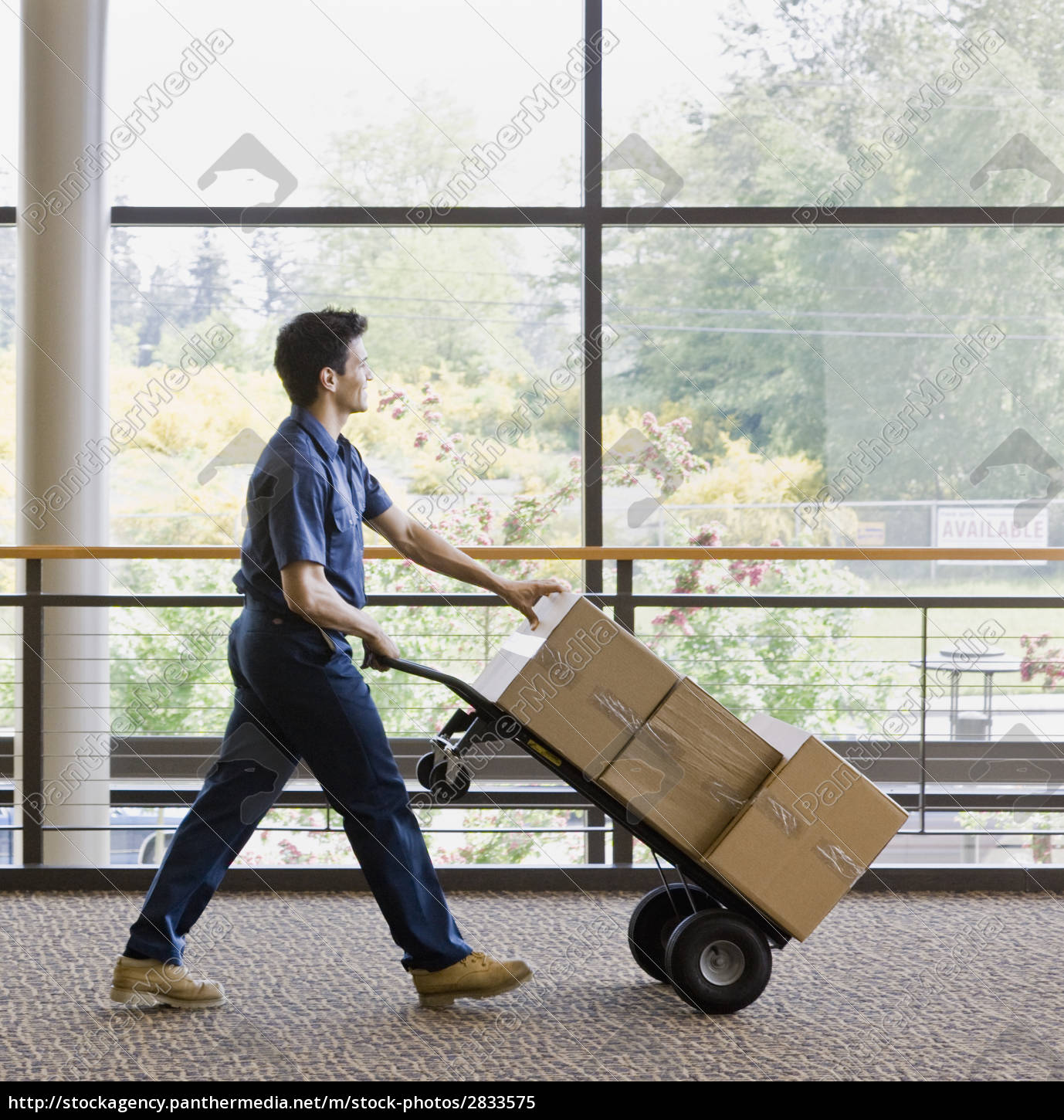 young, man, moving, boxes - 2833575