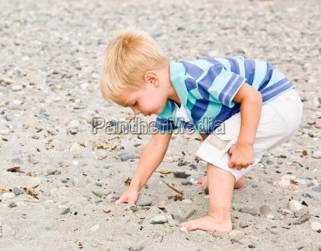 boy, gathering, rocks, at, beach - 2834717