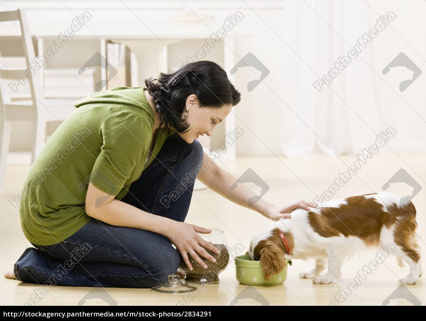 woman, feeding, puppy - 2834291