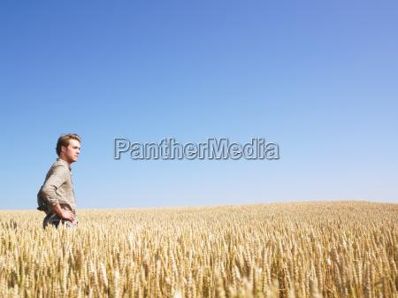 man, in, wheat, field - 2837539