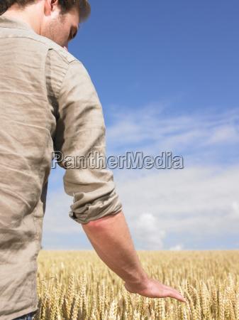 man, in, wheat, field - 2837613