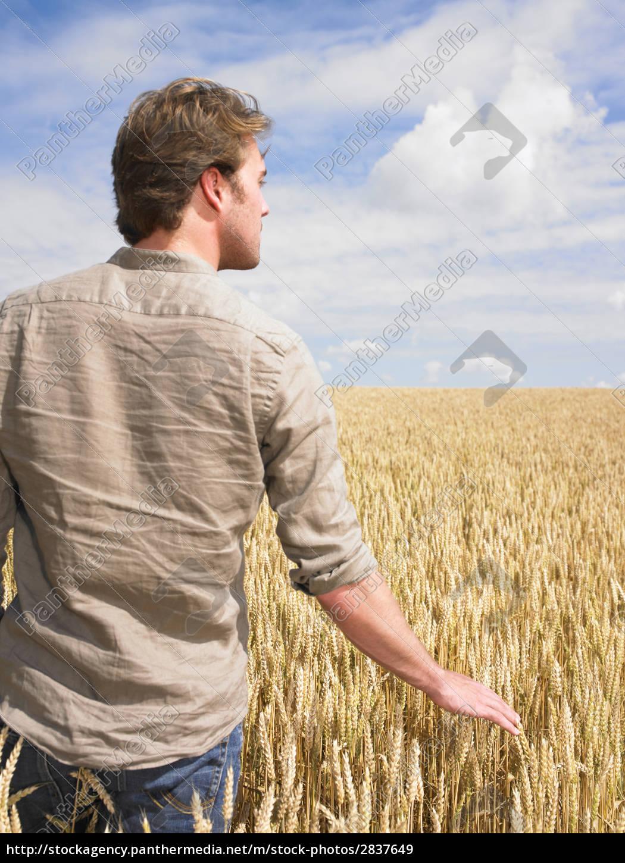 man, in, wheat, field - 2837649
