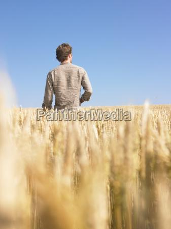 man, in, wheat, field - 2837699