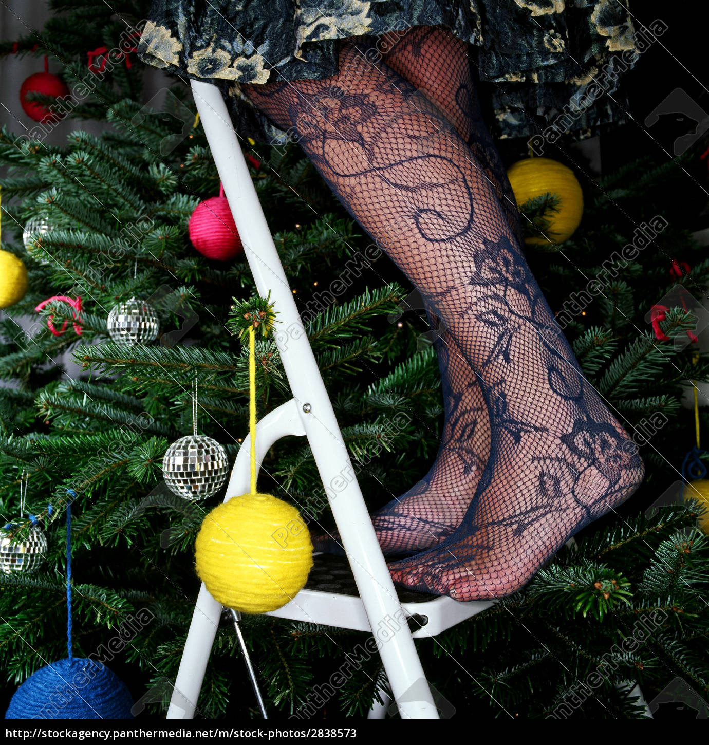 woman, in, stockings, decorating, christmas, tree - 2838573