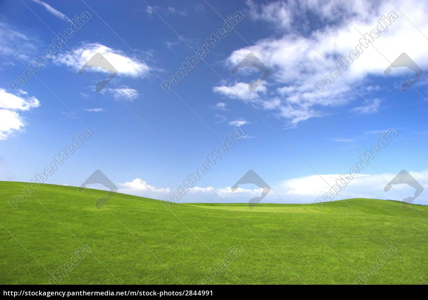 green, field - 2844991