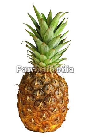 food, aliment, fruit, exotic, pineapple, fresh - 2916827