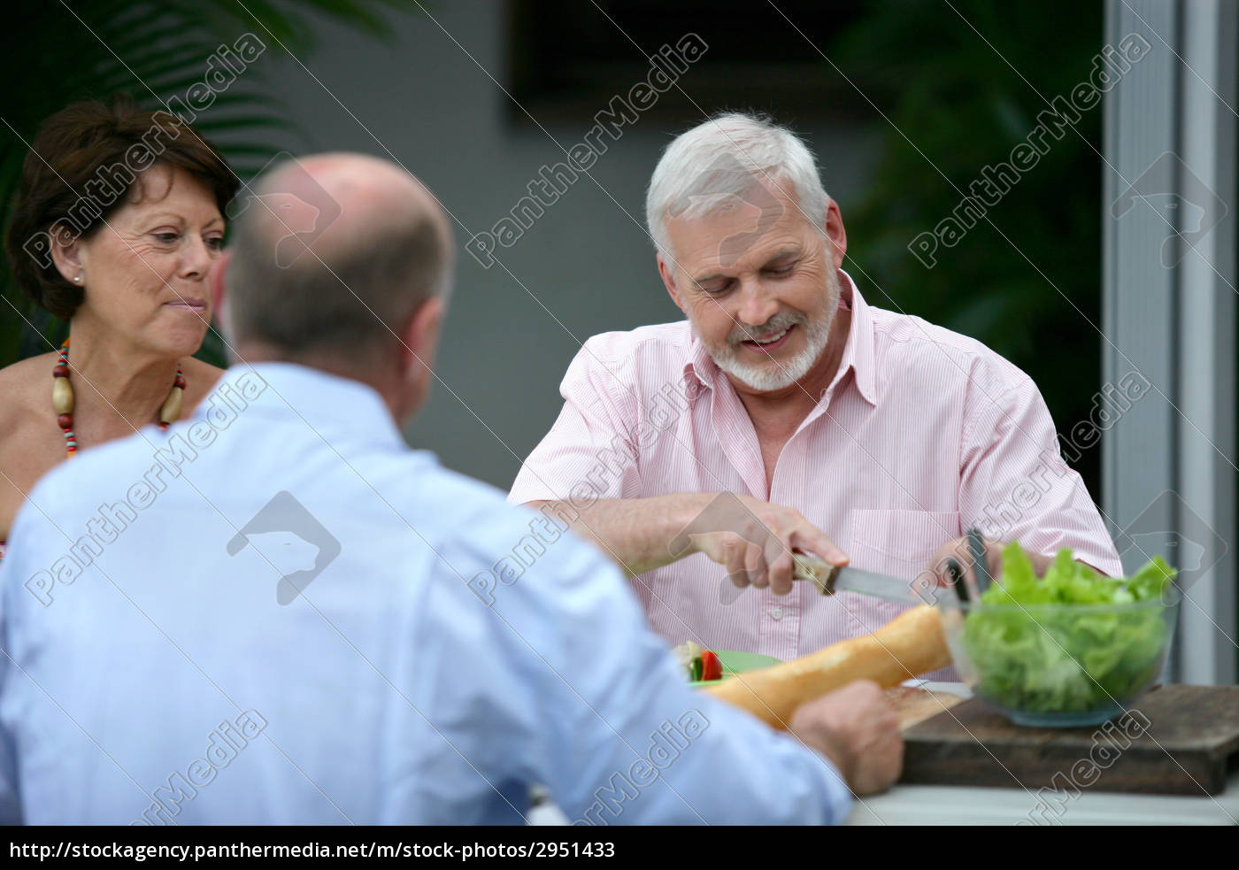 group, of, seniors, eating, on, the - 2951433