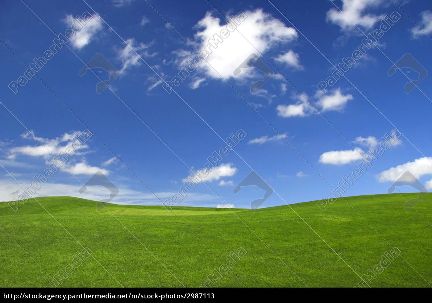 spring, landscape - 2987113