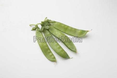 field pea