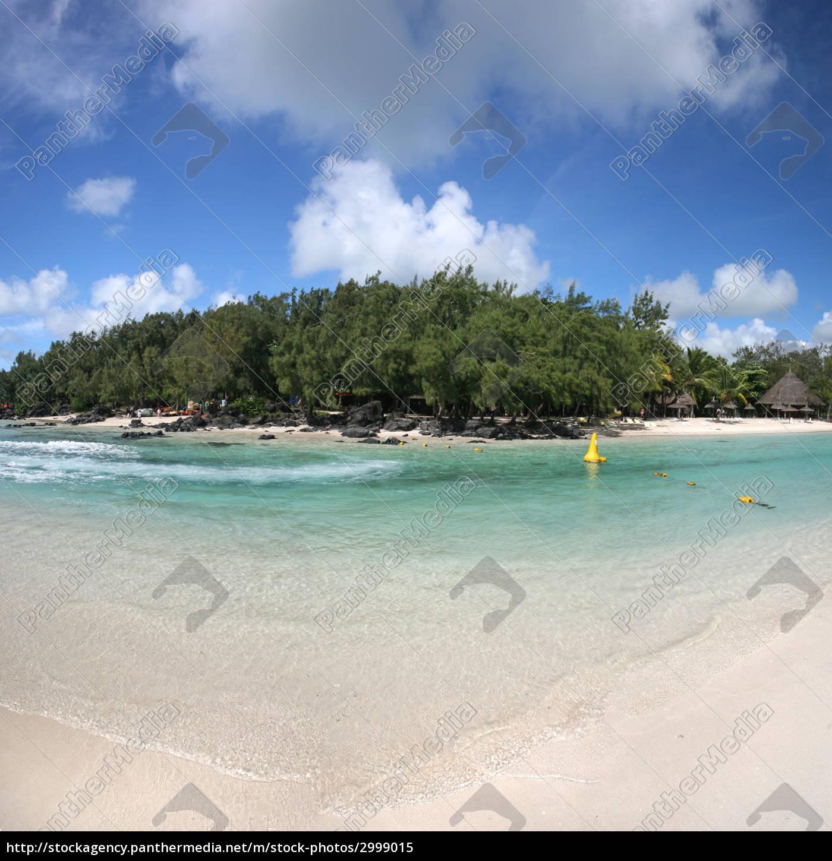 island - 2999015