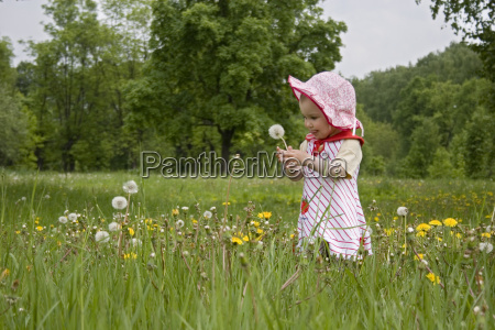 baby, on, meadow - 3000909