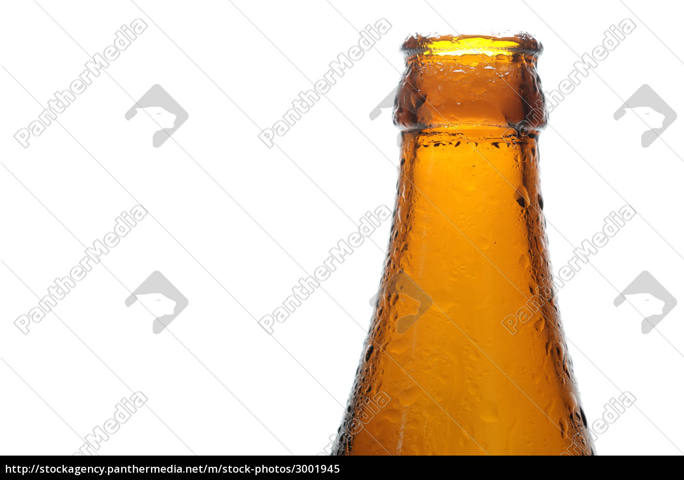 beer, bottle, with, condensate - 3001945