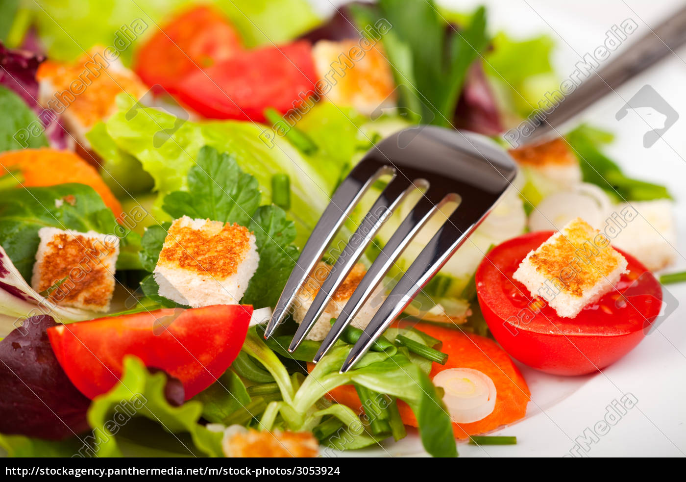 mixed, salad, with, a, fork - 3053924