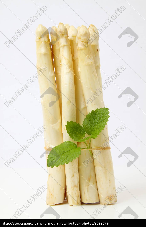 asparagus - 3093079