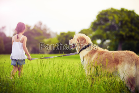 young, girl, with, golden, retriever, walking - 3093005