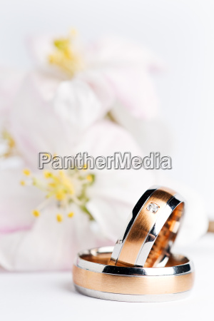 wedding, rings, wedding, bands - 3098849