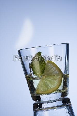 iced tea with lemon and peppermint