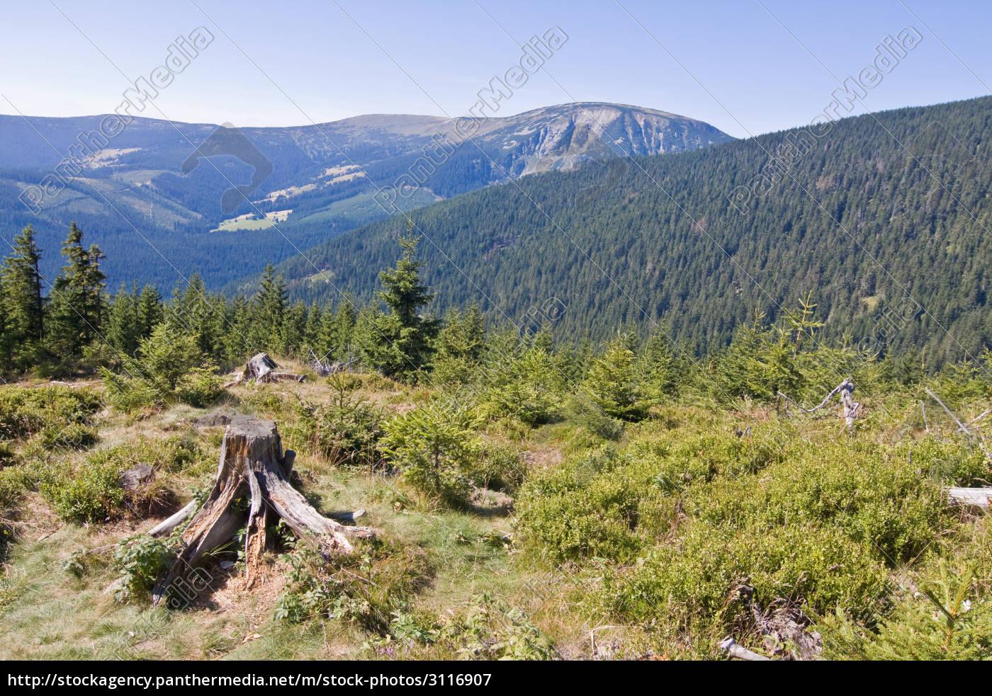 giant, mountains - 3116907