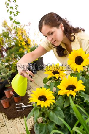 gardening, -, woman, sprinkling, water, on - 3121911