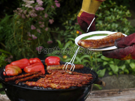 barbecue, in, the, garden. - 3131215