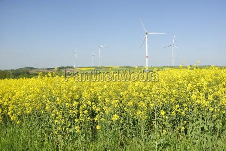 eco energy 67