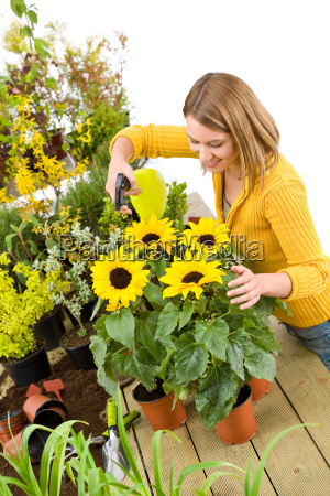 gardening woman sprinkling water to
