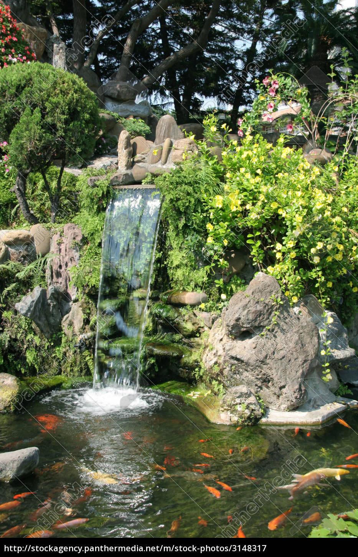 asian, garden, - 3148317
