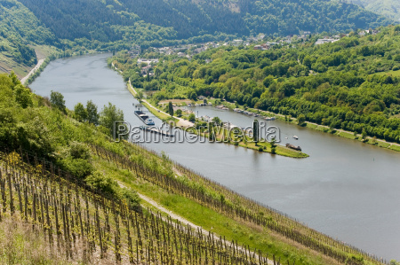 moselle - 3148315
