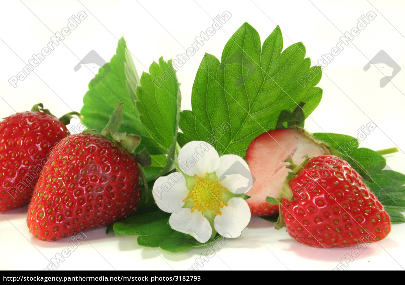 strawberries - 3182793