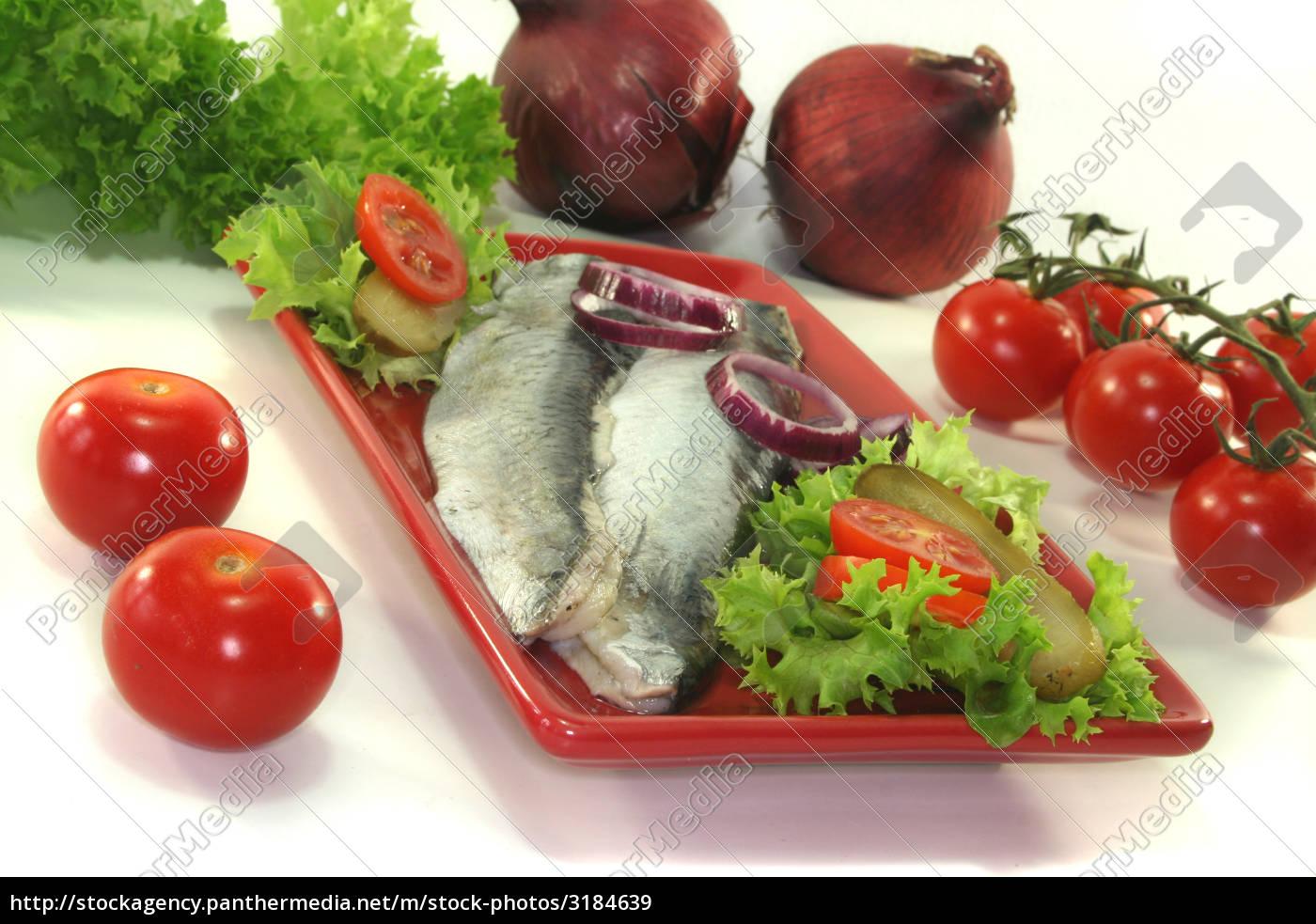 herring - 3184639