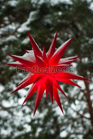 christmas, star - 3185045