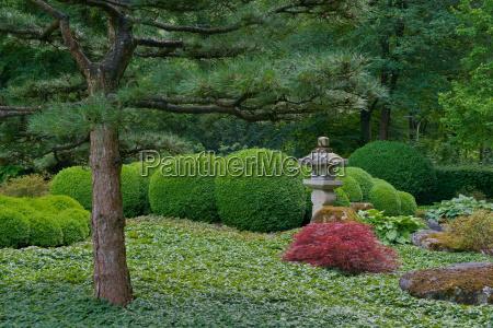 japan, garden - 3211139