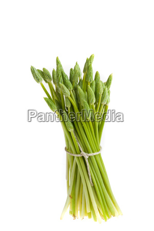 wild green asparagus isolated on white