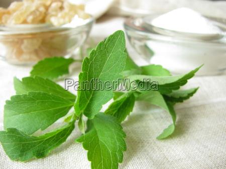 stevia, sugar, and, candy - 3237289