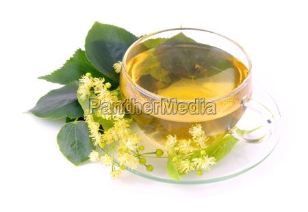 tea, lime, blossom, -, tea, from - 3245401