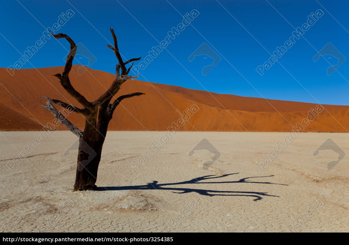 namibia, desert - 3254385