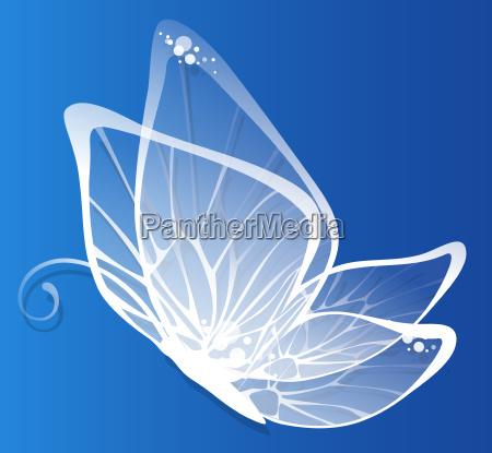butterfly - 3260639