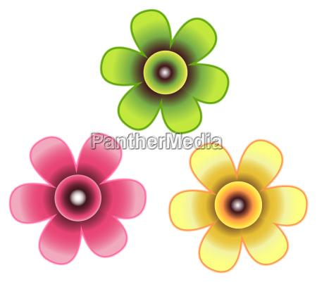 three, flowers - 3260641