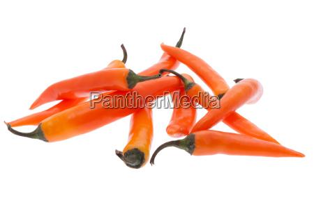 orange chili pepper