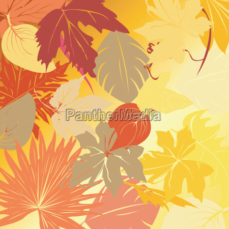 autumn, leaves, background - 3269355