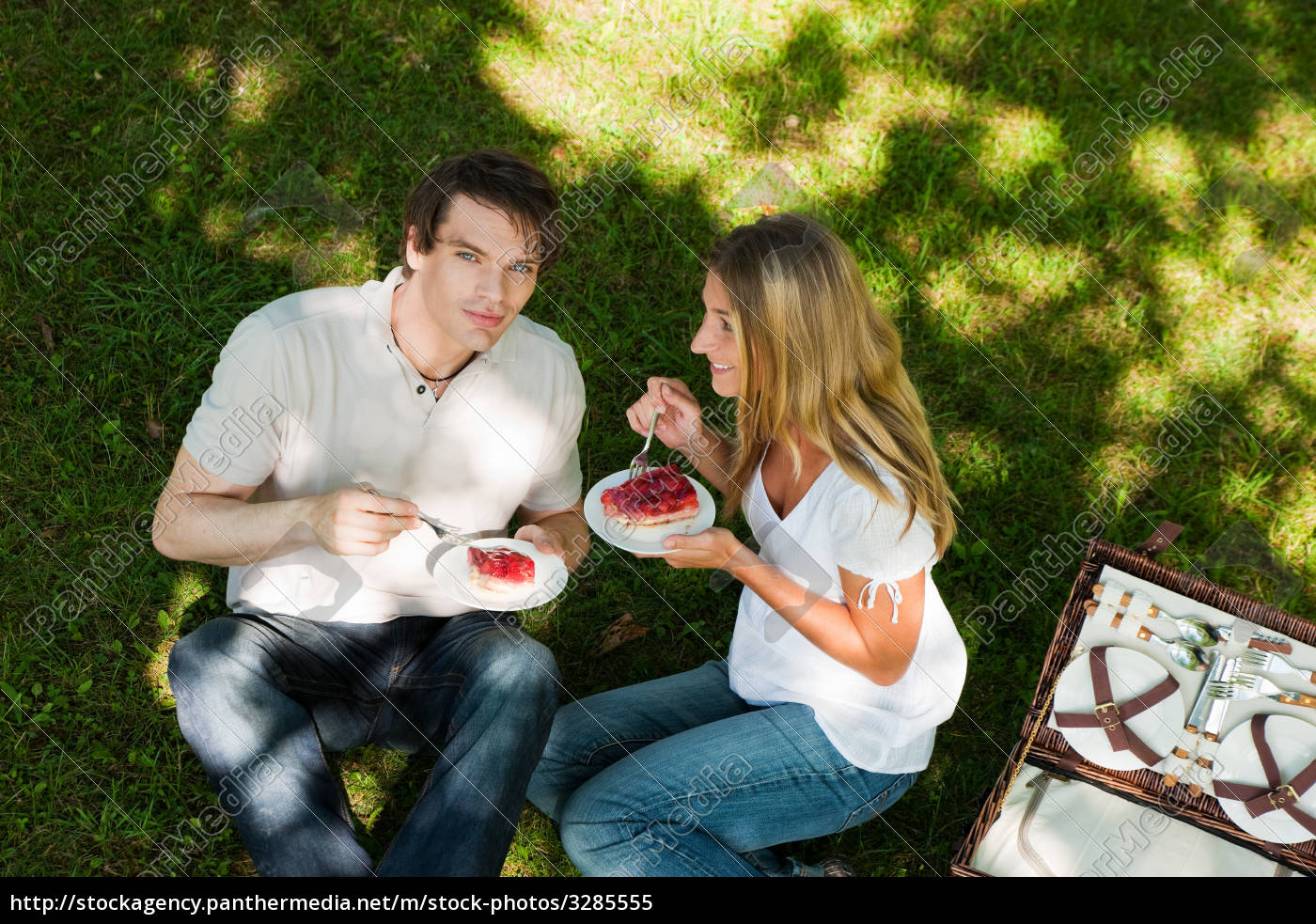 picnic, in, the, countryside, and, strawberry - 3285555