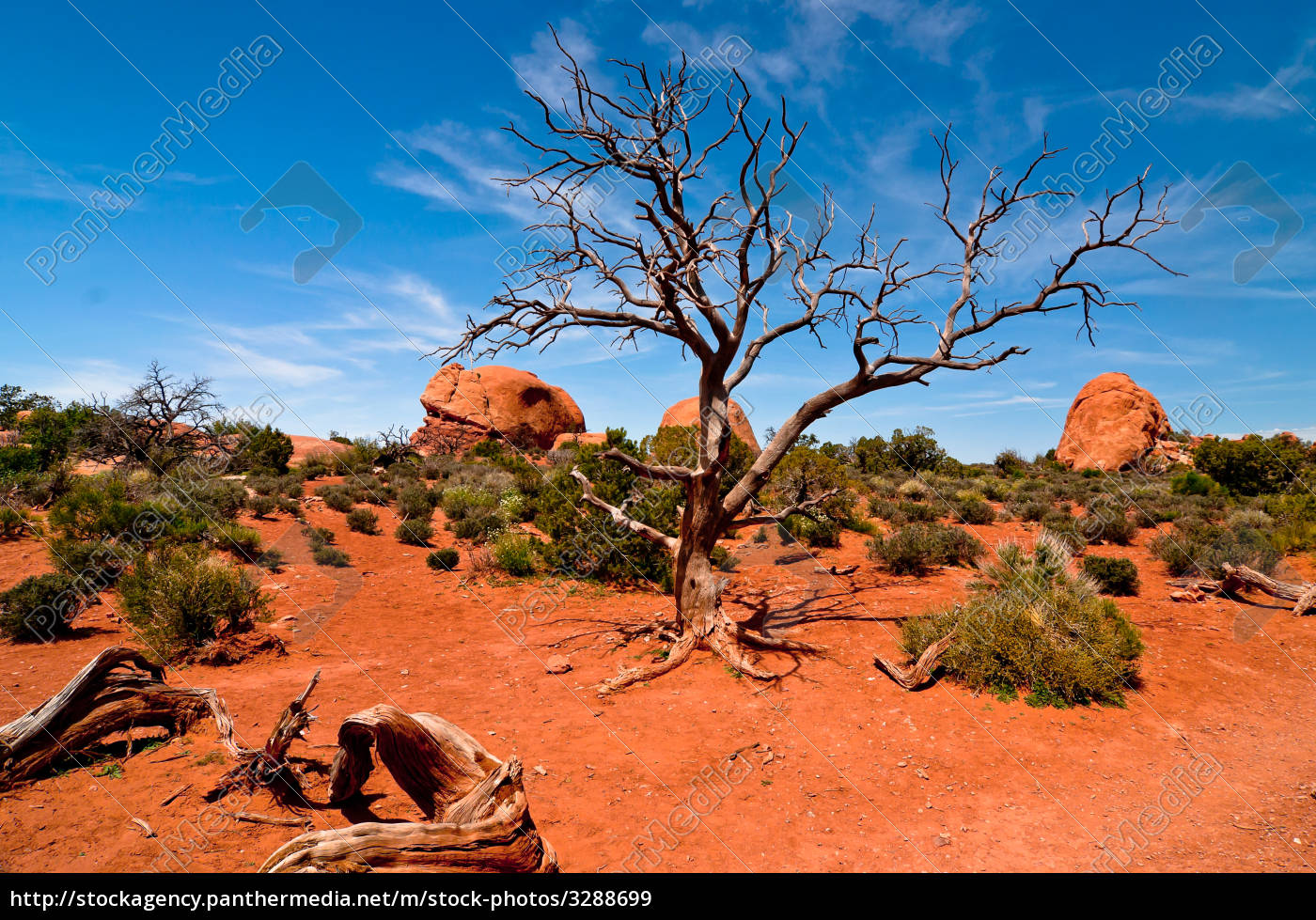 stone, desert - 3288699