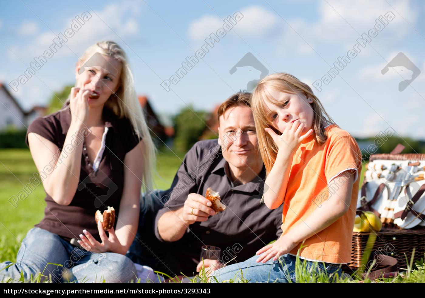 family, having, a, picnic - 3293343