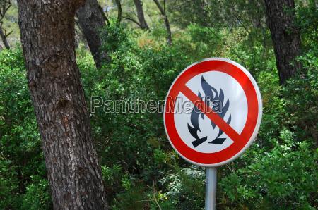 forest fire hazard